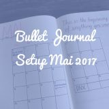 Bullet Journal Monatsübersicht Mai 2017
